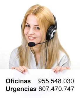 Empresa de control de plagas en Sevilla: Llámanos