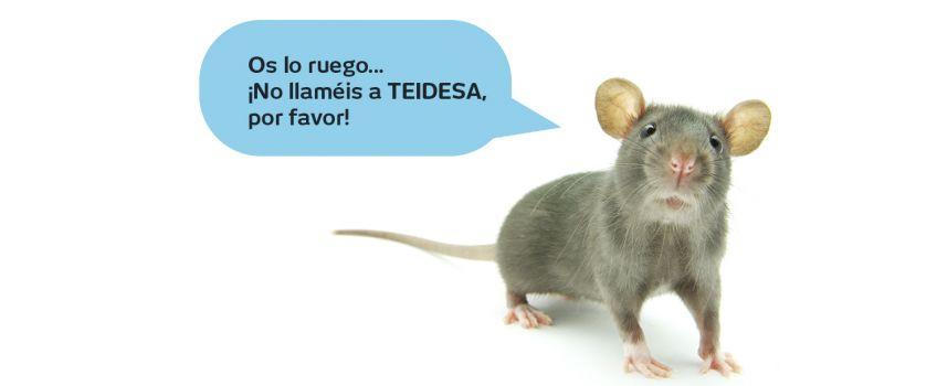 Por una casa libre de ratas