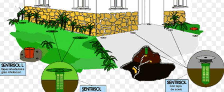 Producto innovador en la lucha contra las termitas
