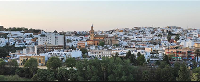 Tu empresa de control de plagas en  Alcala de Guadaira (Sevilla)