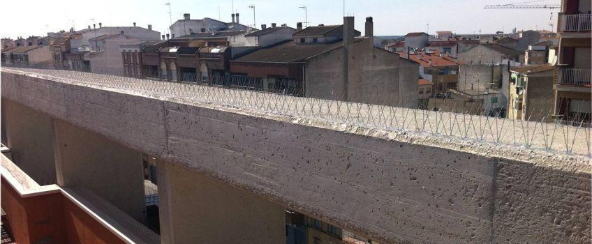 Tratamiento en el municipio de La Roda, Albacete.