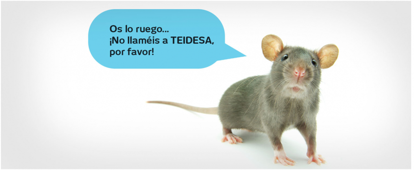 Desratización en Sevilla con Teidesa tu empresa de control de plagas en Sevilla