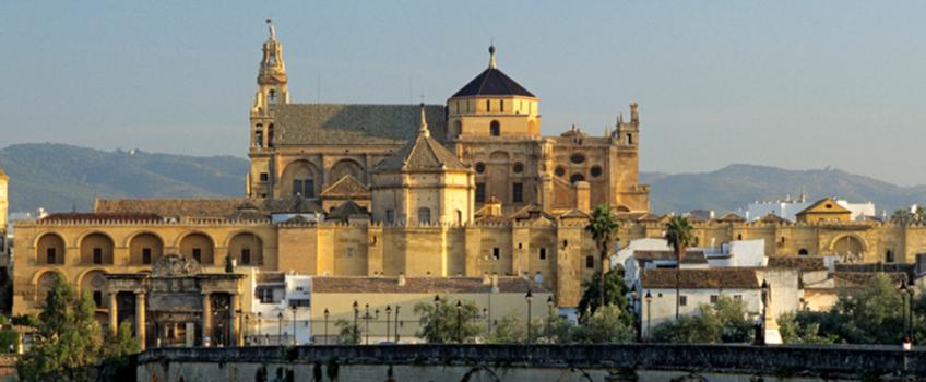 Control de Termitas en Catedral Mezquita de Córdoba